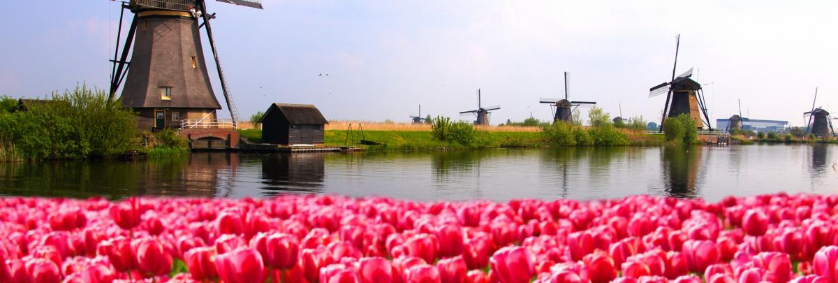 Netherlands VAT